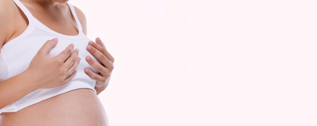 Quais as mudanças nos seios da gestante durante a gravidez?
