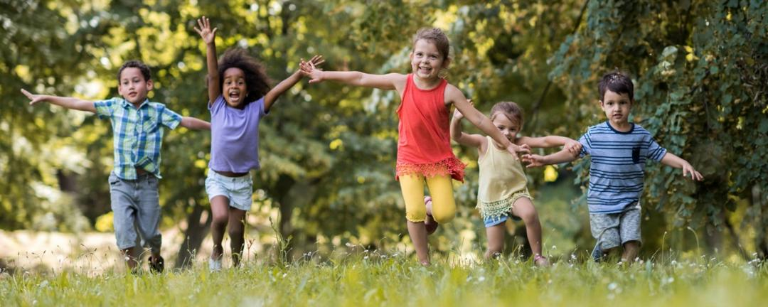 Descubra como criar uma relação entre as crianças e a natureza