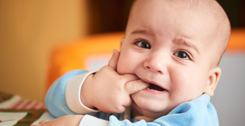 Começaram a nascer os primeiros dentes do bebê. Como lidar com o incômodo?