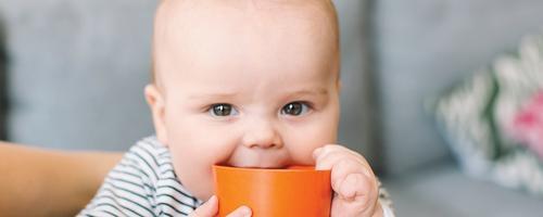 Como evitar a desidratação em bebês?